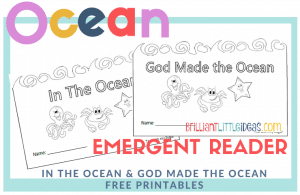 Free Printable for kids daycare or Sunday school. Filled with ocean animals and easy to read words. God made the ocean and In the Ocean Emergent Reader Book