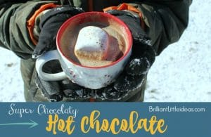 This is the best hot chocolate recipe ever! I love hot cocoa don't you? Surprise your kids with the super Chocolaty hot cocoa today!
