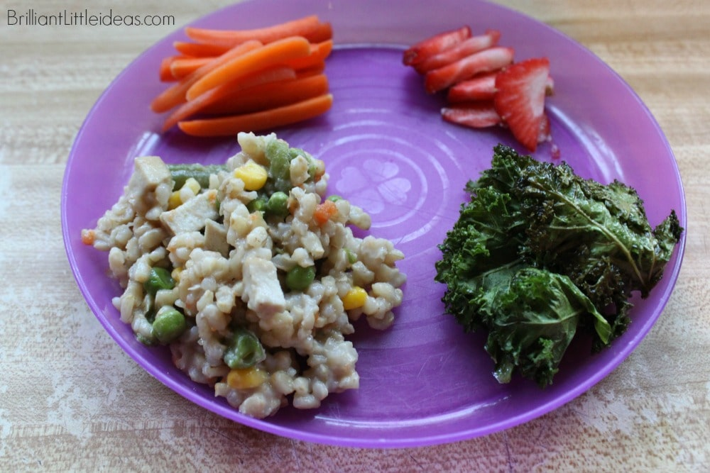 Need food ideas for your kids and family? Try these 15 easy kid lunch ideas or quick dinner recipes for kids. kid approved