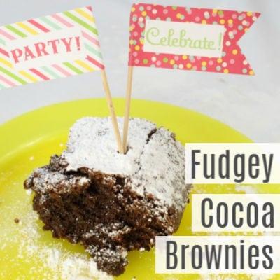 Easy Fudgey Cocoa Brownies